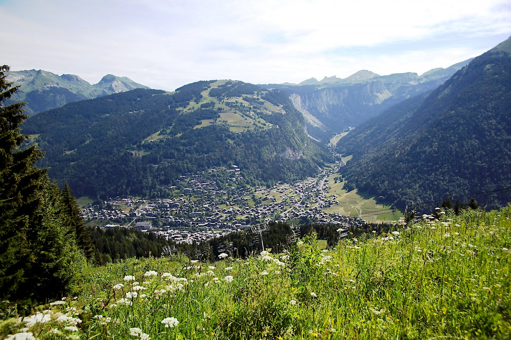 Morzine Mountain View Summer - Mountain Mavericks