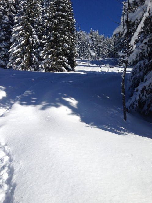 Riding the best powder in Europe