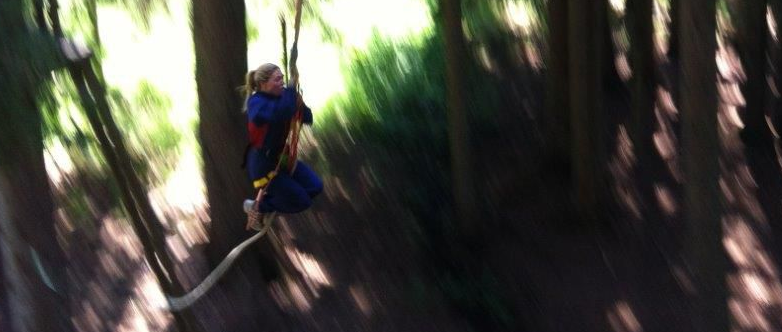 Treetops Adventure Park in Les Gets